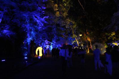下鴨神社 糺の森の光の祭_10