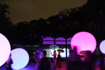 下鴨神社 糺の森の光の祭_11