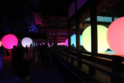 下鴨神社 糺の森の光の祭_5