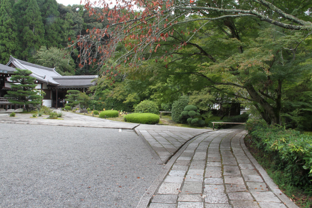 西芳寺 苔寺